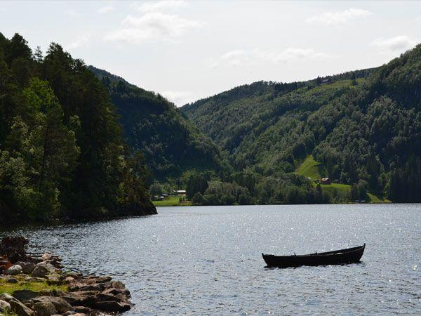 Omgeving Type Storodde | Fjord Home