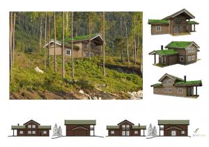 Type Storodde   Wonen in Noorwegen   Fjord Home